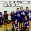 2015 basketball SPRING LEAGUE – MINI boys  U11