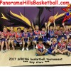 2017 SPRING basketball tournament – tiny stars
