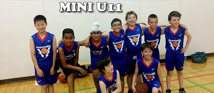 panorama hills basketball fundamentals mini boys