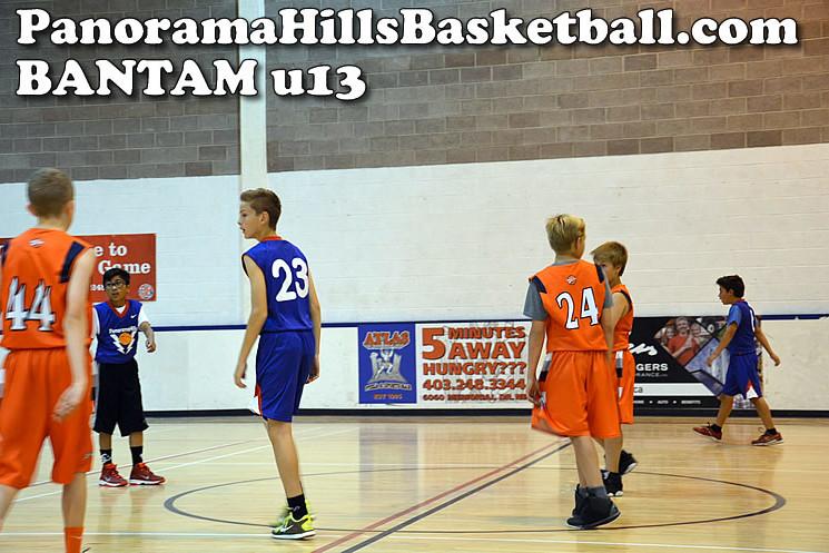 calgary spring league for kids, panorama hills basketball