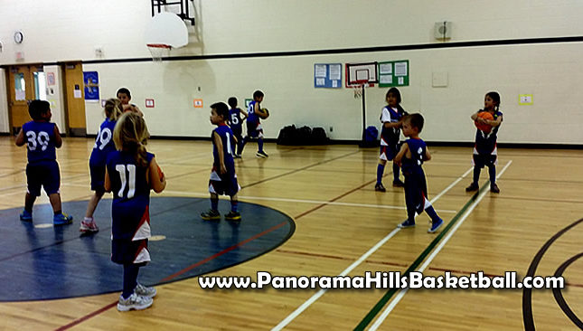 panorama hills basketball for kids tiny/tykes