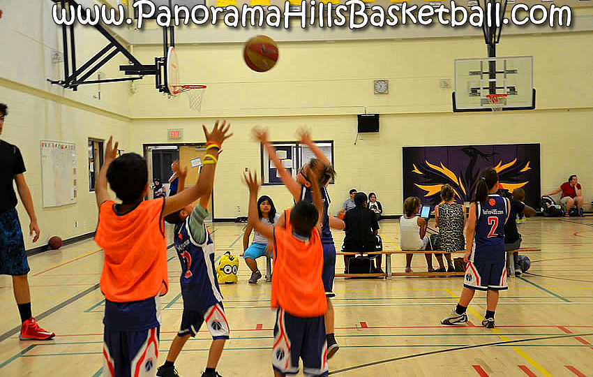 panorama-hills-basketball-for-kids