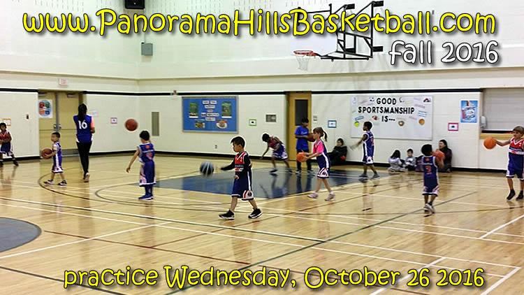panorama-hills-basketball-for-kids-2016