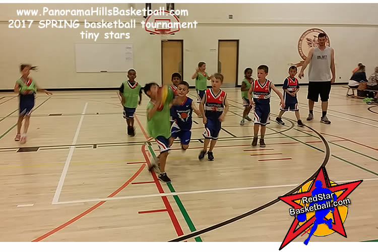 Panorama hills red star  basketball for kids, ljuba djordjevic basketball school